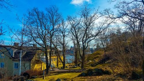 SLG-husets trädgård som kommer att försvinna i samband med bygget av ett bostadshus