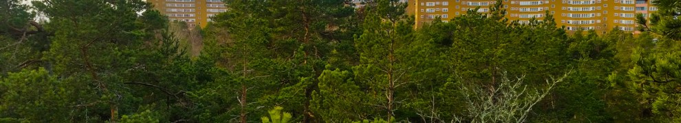 Henriksdalsringen syns från nyckelbiotopen Trolldalen på Henriksdalsberget