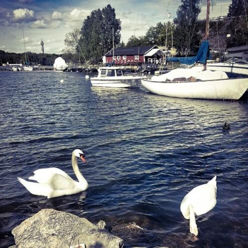 Hästholmssundet med Hästholmens båtsällskap mellan Kvarnholmen och Finnboda