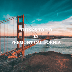 things to do in fremont