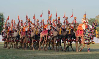 Images of Rajasthan Diwas 2017