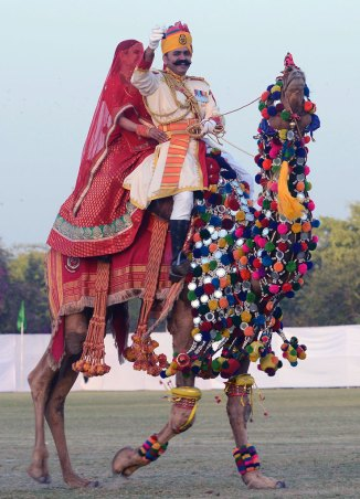 Camel Ride on Rajasthan Diwas 2017