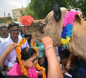 vasundhara-raje-ratangarh-churu-rajasthan-gaurav-yatra-CMP_7469