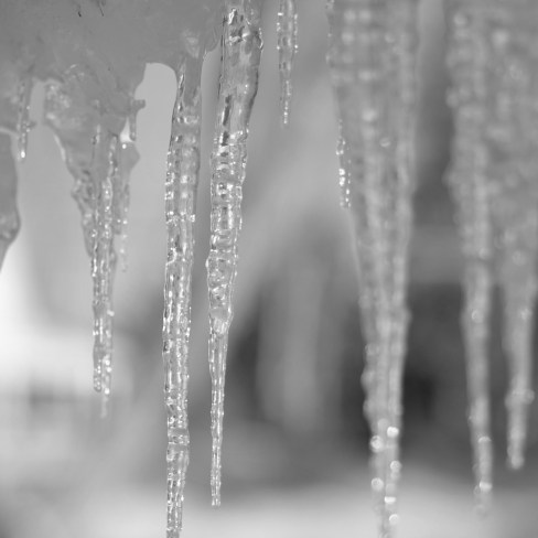 Icicle III in B&W