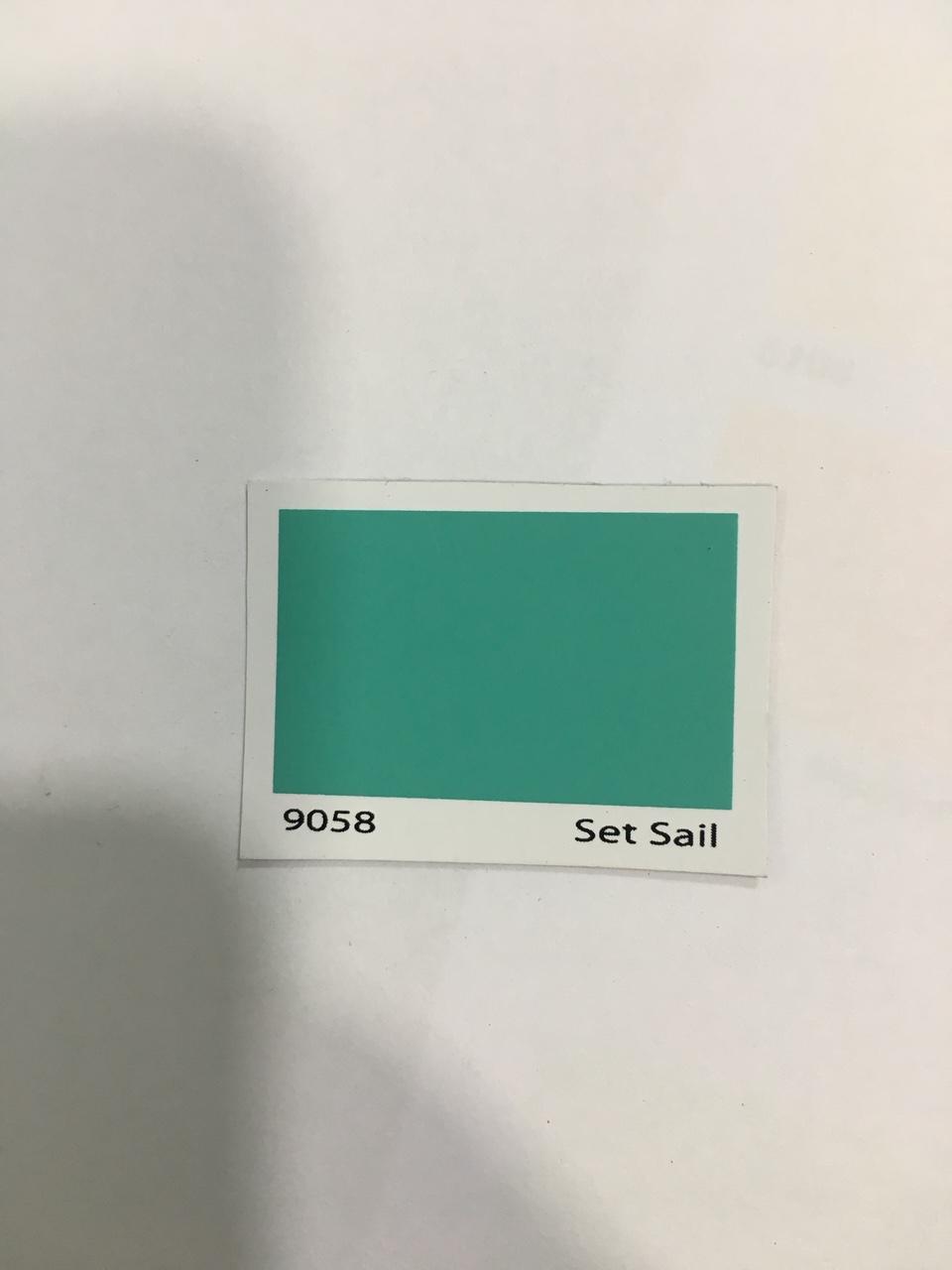 SON DAU DONASA 9058 (2)