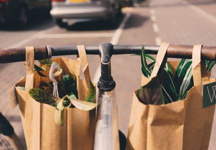 Insurance 101 for Grocery Suppliers