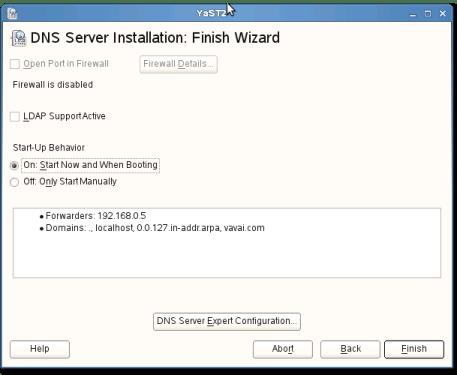 Gambar 11 : Wizard terakhir, service DNS Server dijalankan saat booting