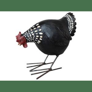 chicken black
