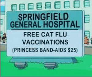 Free cat flu vaccinations at Springfield General Hospital!