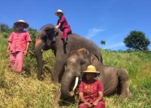 Chiang Mai, Thailand elephant park Vaycarious.com