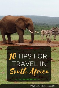 Add Elephant National Park - 10 Tips for Travel to South Africa vaycarious.com