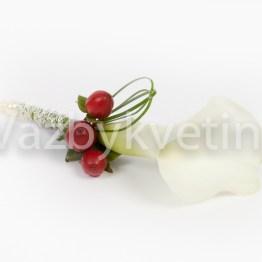 Klopa z bílé kaly