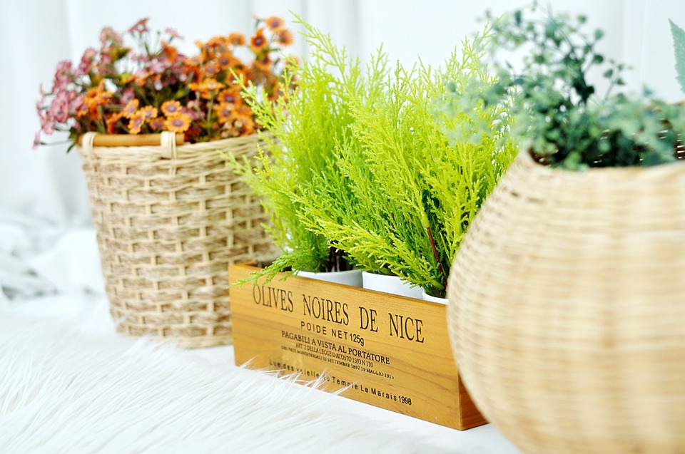 plantas  para reforma de terraza