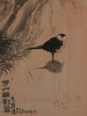 birdwithshadow_1.23583146_std
