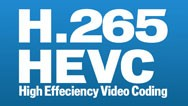Germany DVB-T2 H.265 HEVC Codec New Model DVB-T265 auto mobile digital car dvb-t2 tv receiver 21