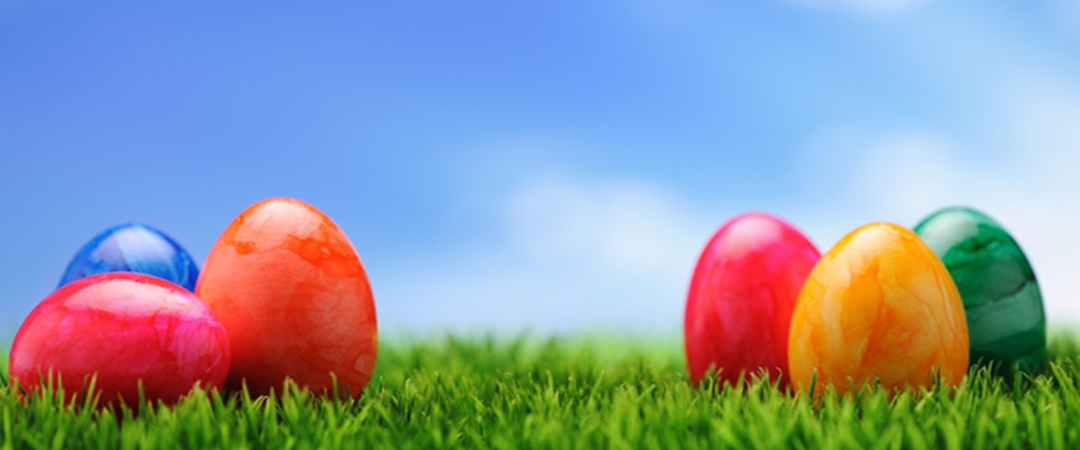 Banner-EasterCelebration-Bkgd