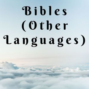 Bibles (Other Languages)