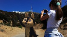 Hollywood Tourist