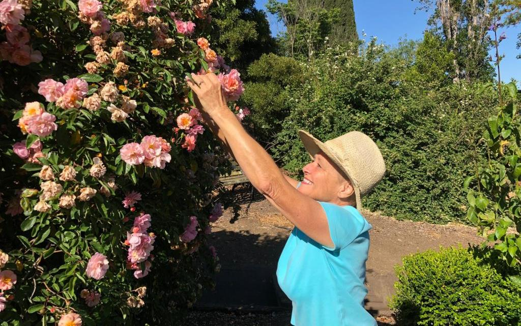 GROUNDING EFFECT | The healing power of gardening in a frantic world