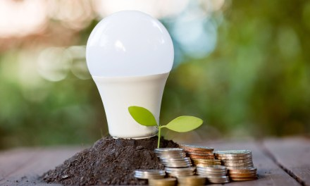 EYE ON THE ENVIRONMENT | Energy waste versus solid waste: Don't wait to switch out LED bulbs