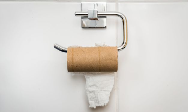 EYE ON THE ENVIRONMENT | Toilet paper alternatives include bidets
