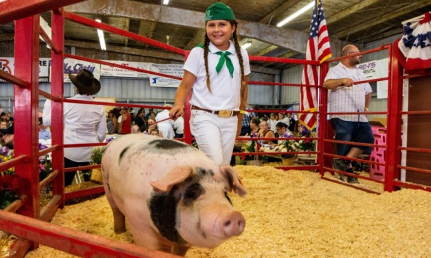 KIDS LIVESTOCK AUCTION SAVED