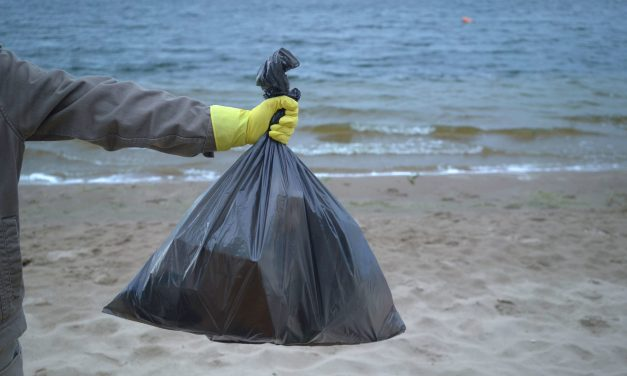 EYE ON THE ENVIRONMENT | Coastal clean-up day customized for COVID