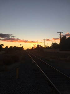 Tracks in The Sunset