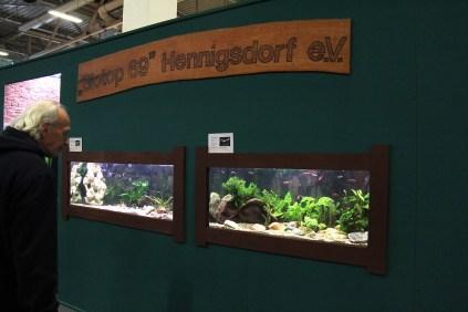 Aquarien am Stand von Biotop 69 Hennigsdorf e.V._resize