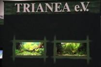 Aquarien am Stand von Trianea e.V._resize