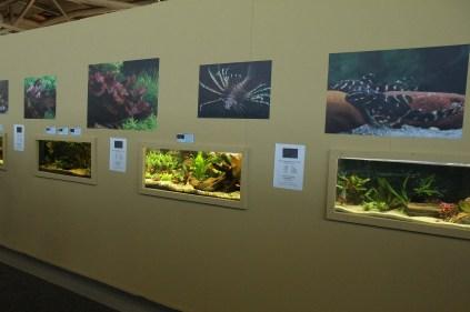 Stand Aquarium Hellersdorf_resize