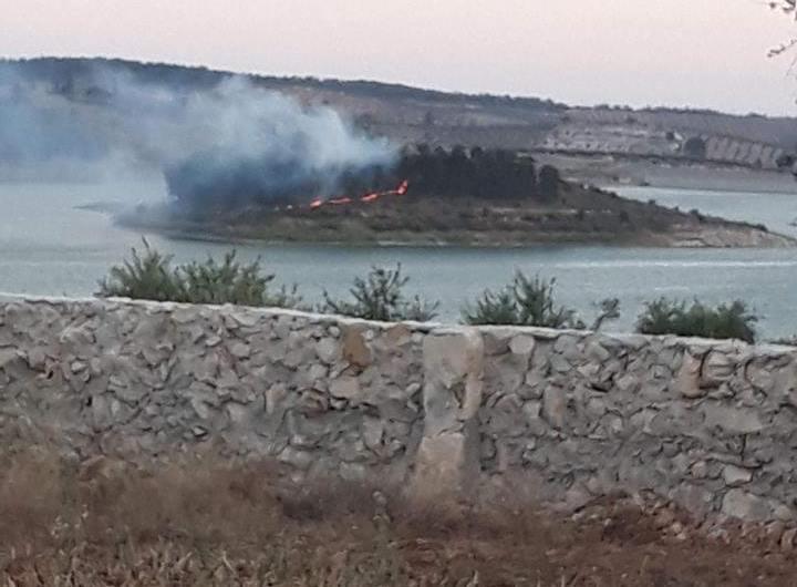 تجدد حرائق الغابات في عفرين