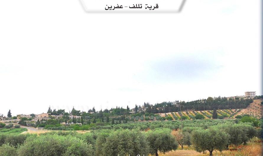 """الفصائل المسلحة تمنع عودة سكان قرية """"تلف"""" في عفرين إلى منازلهم"""