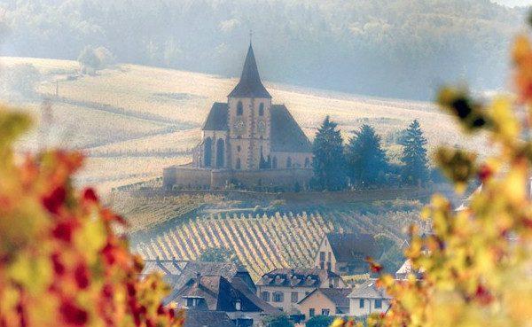 Sainte-hune-viñedos-blog