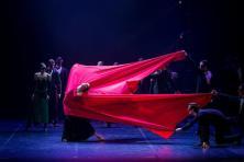 eifman_ballet_red_giselle_photo_evgeny_matveev_14