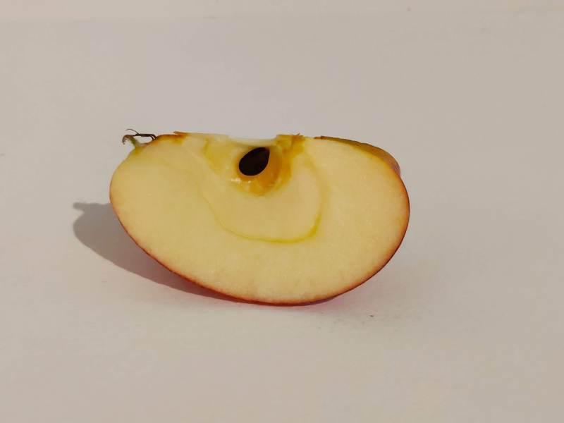 Un quartier de pomme photographié