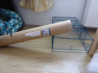 Poster tube trap