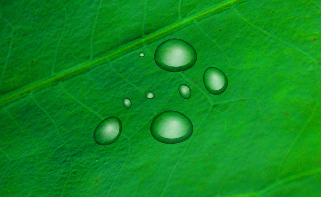 How to use Illustrator to create water drops