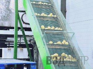 Пищевое оборудование, произведённое в Китае
