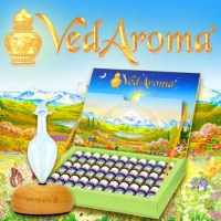 Serbia: Slideshow: Vedaroma Symposium