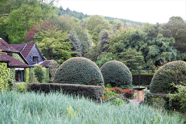 Gardens Need Critics By Anne Wareham For The Garden Design Journal | Veddw