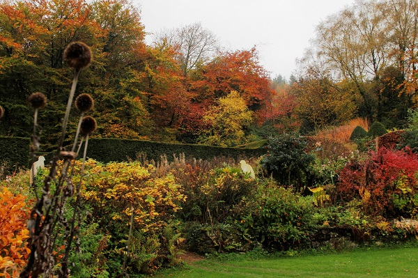 autumn-crescent-border-veddw-copyright-anne-wareham
