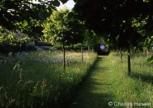 Veddw - North Garden - Meadow 2