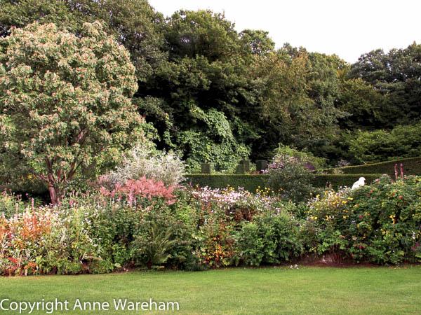 Crescent Border, Veddw late summer with Sorbus huphenensis alba in flower copyright Anne Wareham