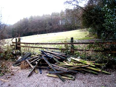 April 2013 dead fence © Anne Wareham