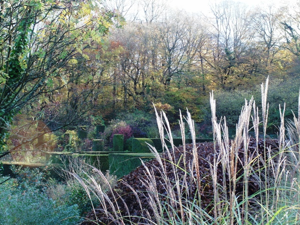 Veddw autumn Copyright Anne Wareham.