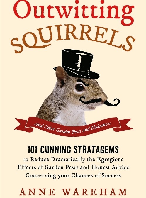 What to do with a Squirrel (without getting prosecuted) by Anne Wareham
