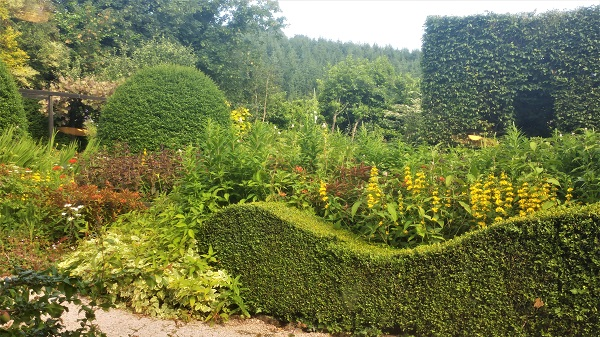 June 2016 Front Garden, Veddw copyright Anne Wareham