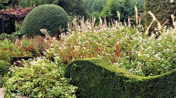 Veddw front garden copyright Anne Wareham front garden copyright Anne Wareham