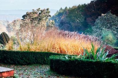 Veddw-House-Garden-octoberr2016-115